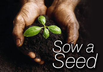 Sow a Seed button
